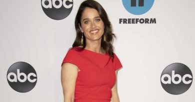 Robin Tunney has a 'Fix' on playing a Marcia Clark surrogate
