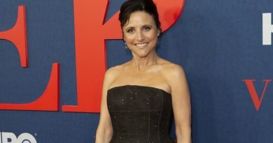 Not about nothing: Julia Louis-Dreyfus has a rich TV history
