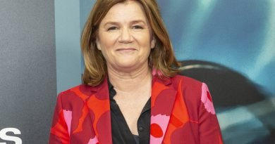 Mare Winningham likes being inside 'The Outsider'