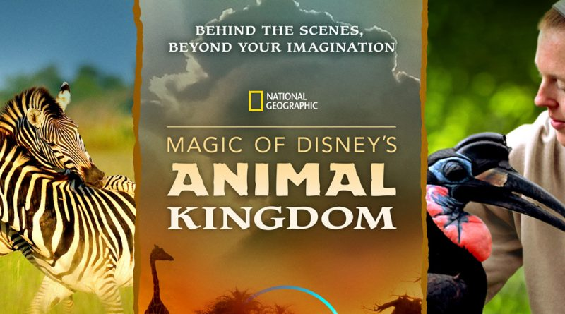 Disney+ brings the 'Magic of Disney's Animal Kingdom' to wildlife fans