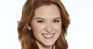 Sarah Drew spends a 'Christmas in Vienna'